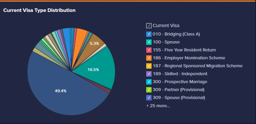 An image of the visa type distribution on the dashboard